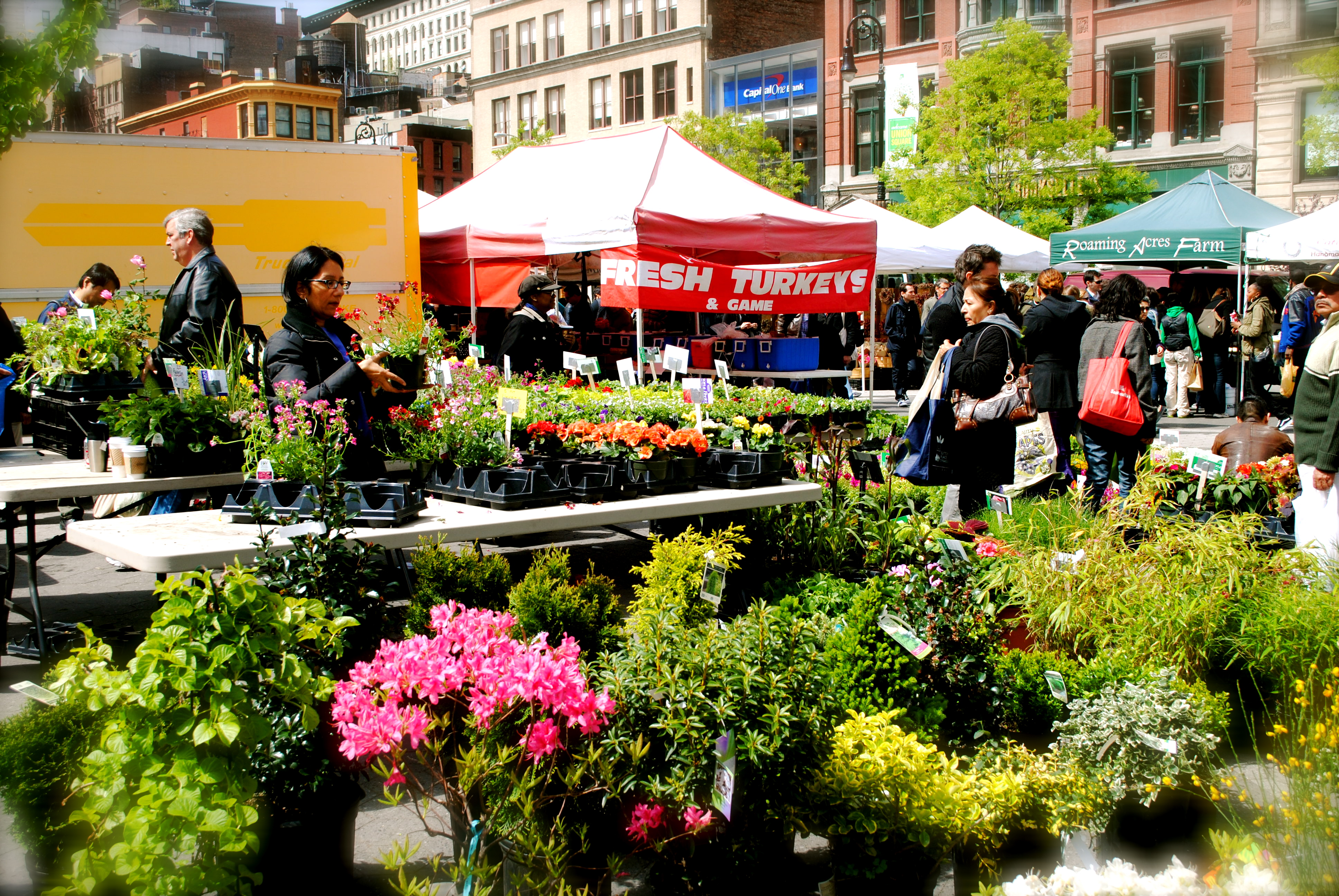 A day in the union square greenmarket thesetrendingtopics for Flowers union square nyc